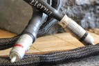 Image cat Cables audio 1