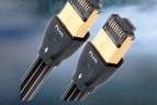 image cat cables reseau 1